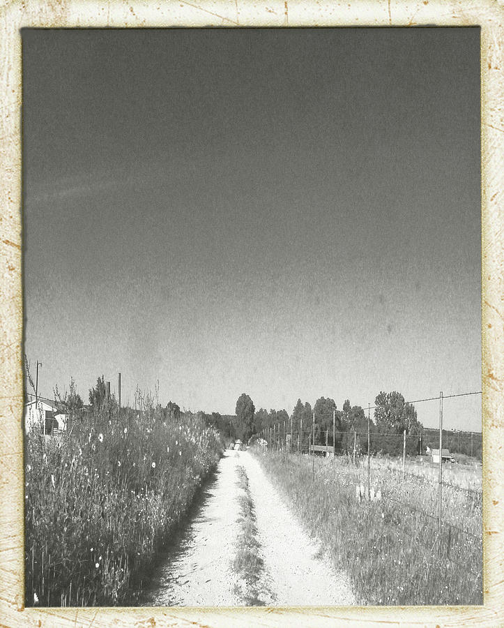 Old Road, Old Time Photograph