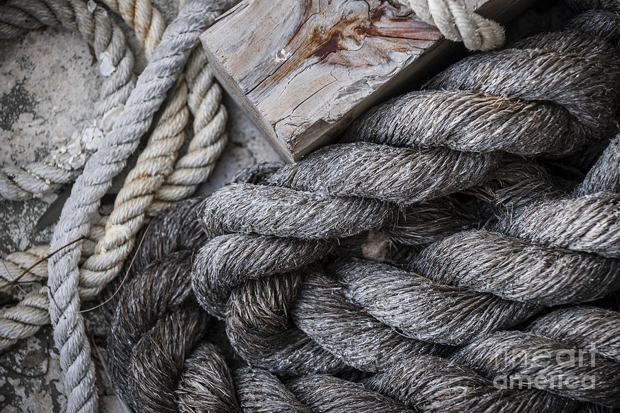 Ropes Photograph - Old Ropes On Dock by Elena Elisseeva