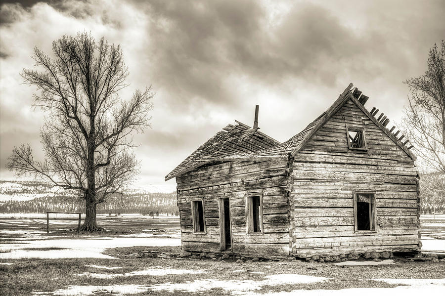 Log House Photograph - Old Rustic Log House In The Snow by Dustin K Ryan