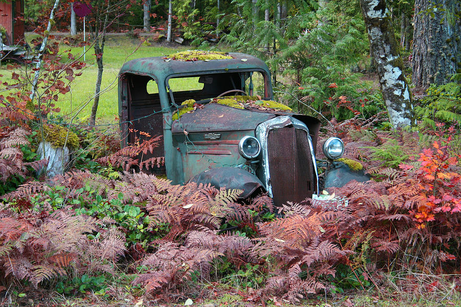 Cars Photograph - Old Rusty Truck I C1000 by Mary Gaines