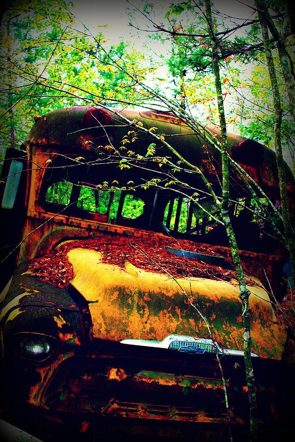 Dana Photograph - Old School Bus by Dana  Oliver