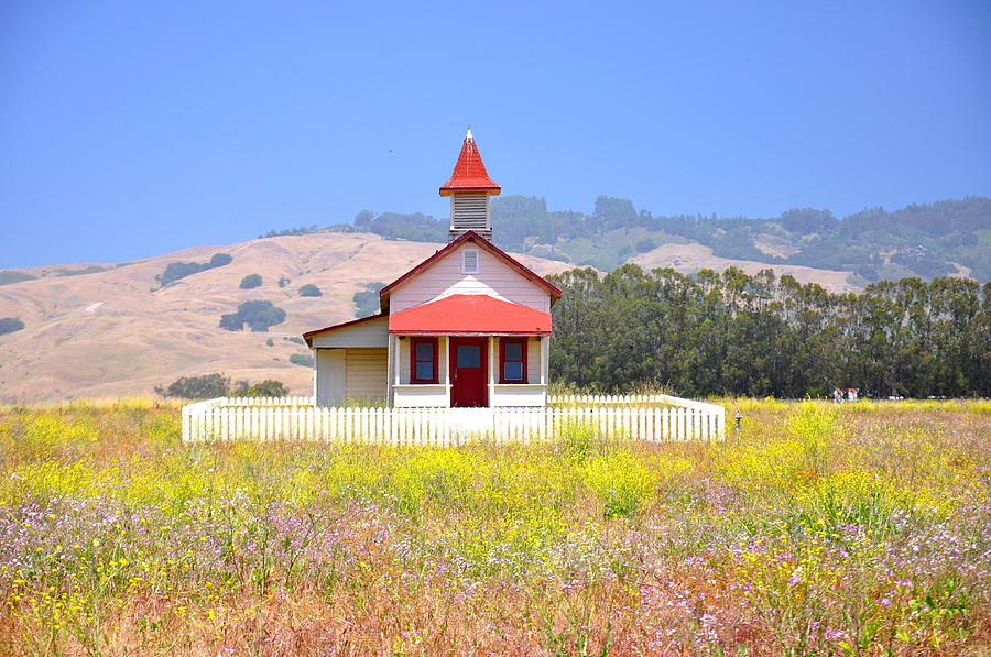 California Photograph - Old School House In A Field by C Thomas Cooney