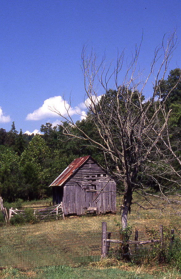 Old Shack Photograph by Curtis J Neeley Jr