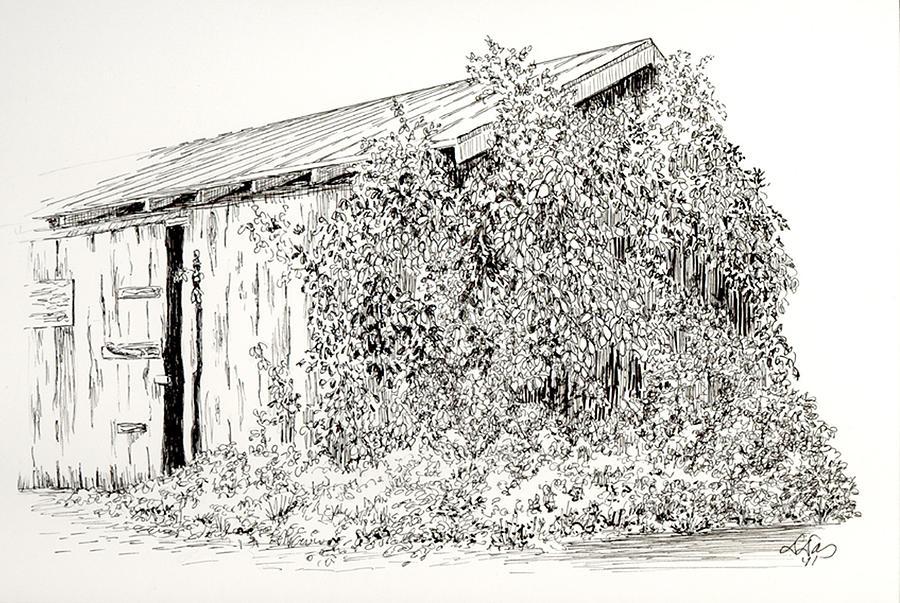 Nature Drawing - Old Shed by Deborah Dallinga