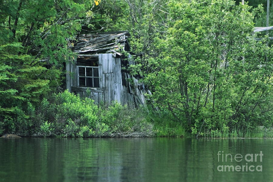Shed Photograph - Old Shed On The Lake by Marjorie Imbeau