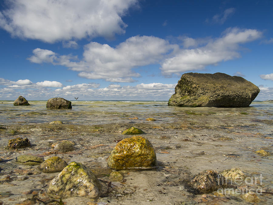 old silver beach 091413-01 by Gene  Marchand