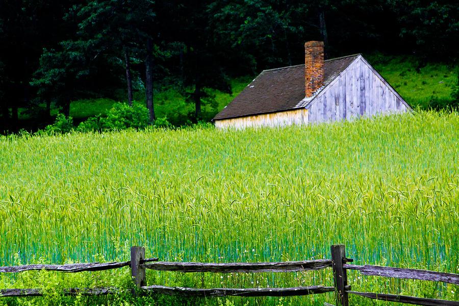 Massachusetts Photograph - Old Sturbridge Farm by Belinda Dodd