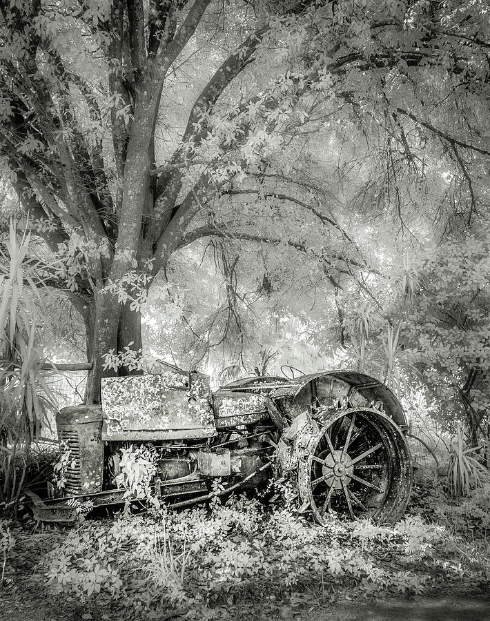 Old Tractor by Steve Zimic