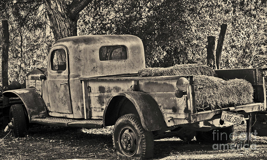 Hay Photograph - Old Truck by Frank Stallone