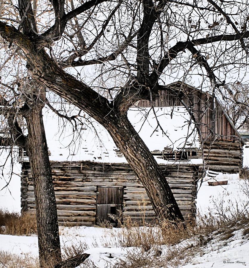 Old Barn Photograph - Old Ulm Barn by Susan Kinney