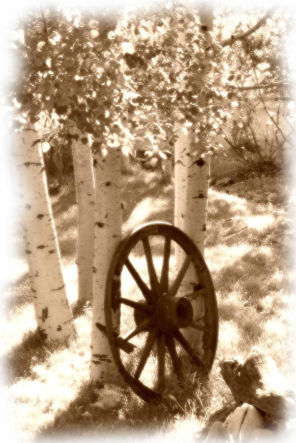 Wagon Wheel Photograph - Old Wagon Wheel by David Downey