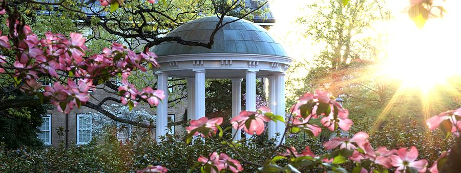 Old Well Photograph - Old Well Dogwoods And Sunrise by Matt Plyler