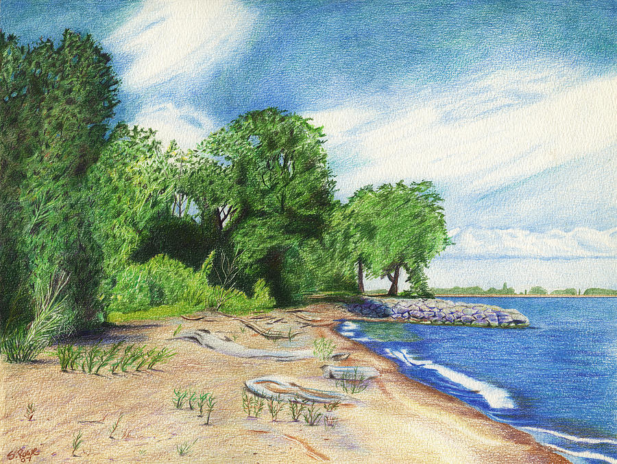 Lake Erie Drawing - Old Woman Creek - Huron Ohio by Shawna Rowe