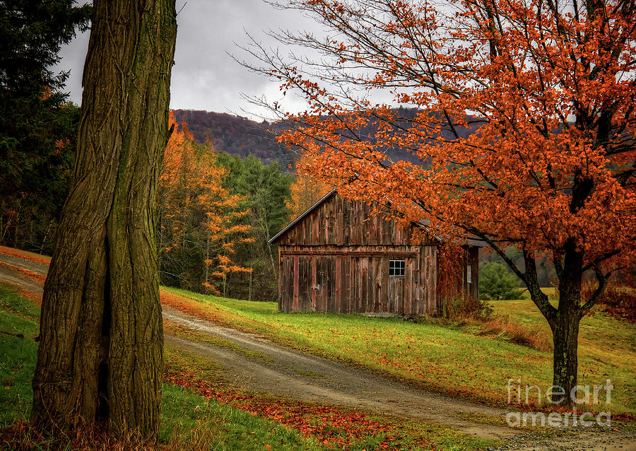 New England Farms Photograph - Old wood shed by Diana Nault
