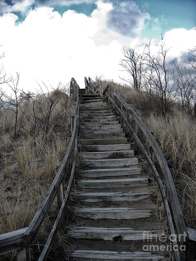 Vertical Photograph - Old Wooden Stairs Leading Up To Top Of A Sand Dune by Christopher Purcell