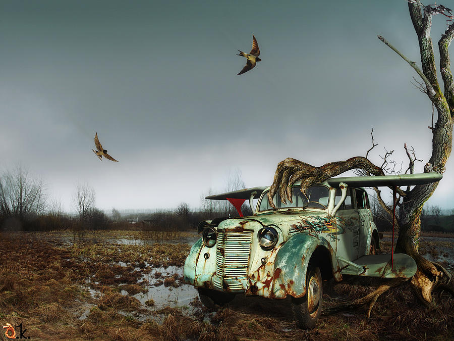 Avto Digital Art - Old_bird by Alexander Kruglov
