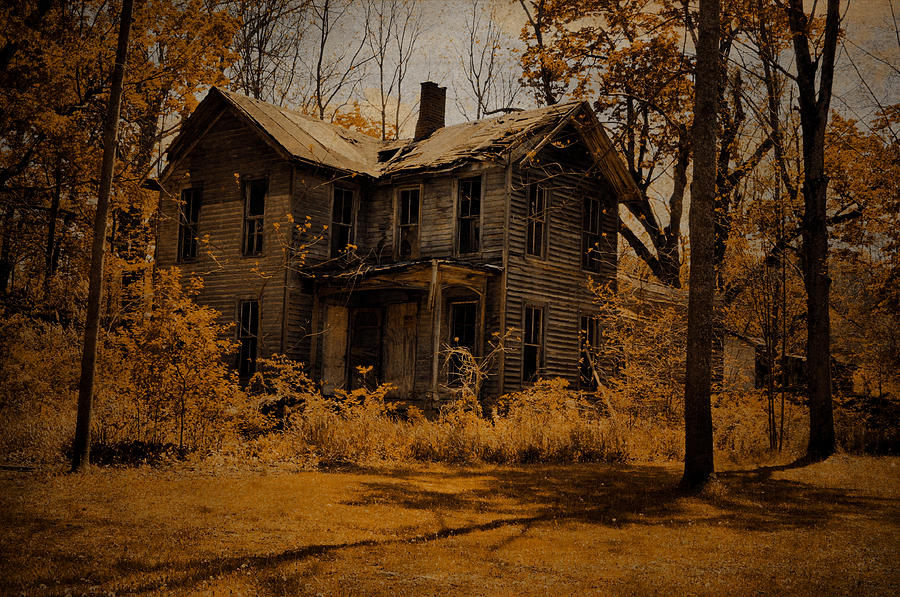 House Photograph - Olden Golden by Emily Stauring