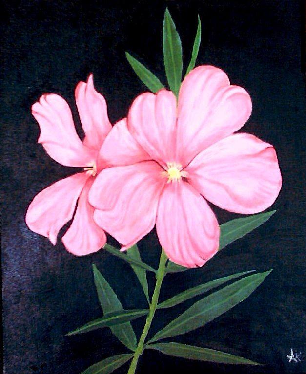 Oleander Painting - Oleander 1 by Al Borrego