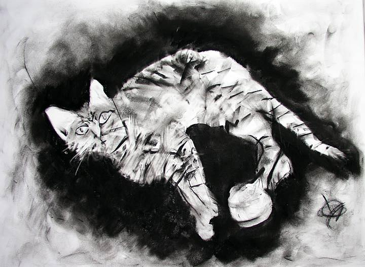 Kitten Drawing - Olive by Brad Wilson