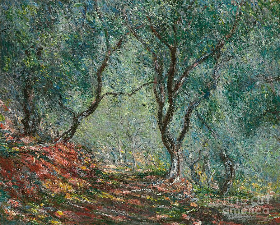 Olive Trees In The Moreno Garden Painting By Claude Monet