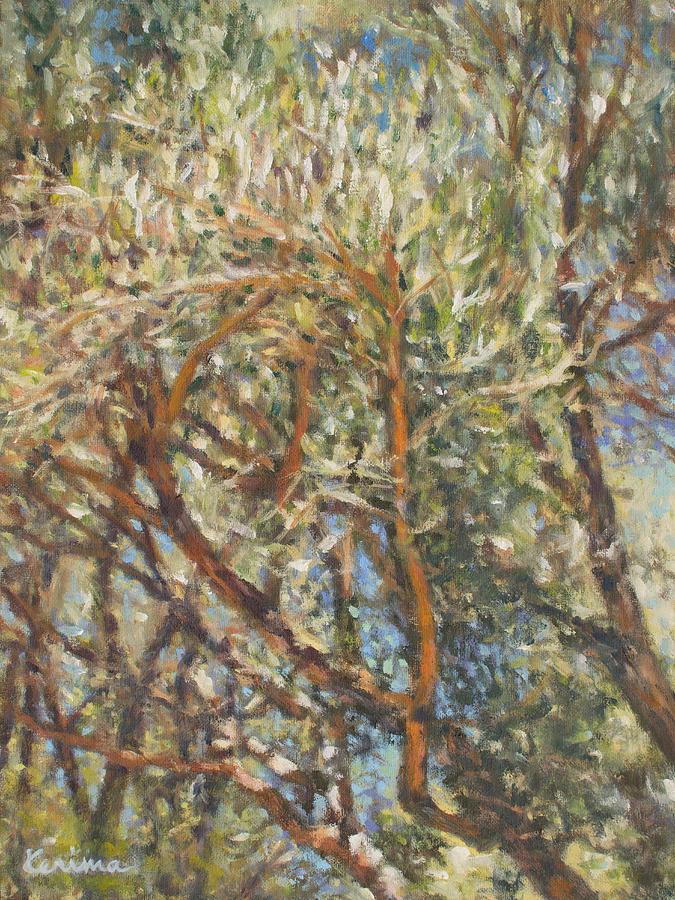 Olive Trees by Kerima Swain