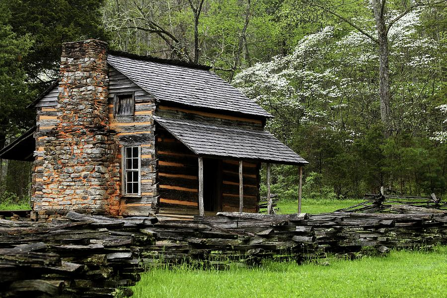Oliver 39 s cabin among the dogwood of the great smoky for Dogwood cabin
