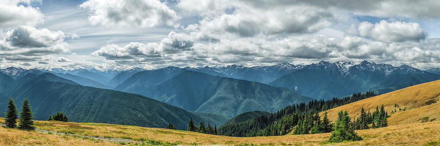 Olympic Mountains Photograph - Olympic Mountains by Mike Herdering