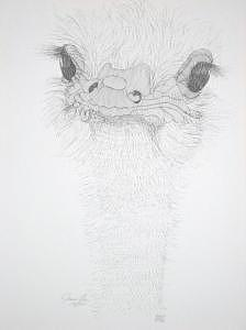 Limited Edition Drawing - Omelette Queen by Joanie Arvin