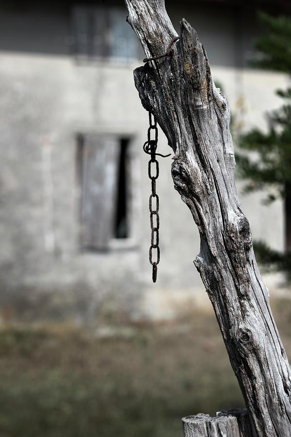 Omen by Helga Novelli