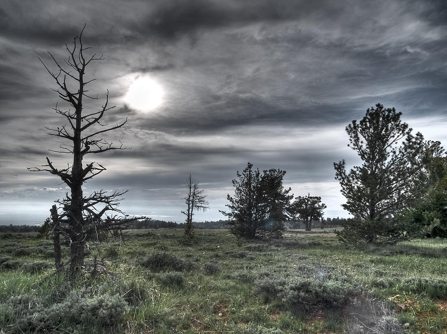 Clouds Photograph - Ominous by Clyde Mead
