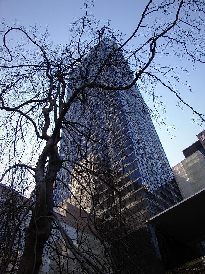 On A Clear Day Photograph - On A Clear Day...moma Courtyard Ny City by Arthur Miller