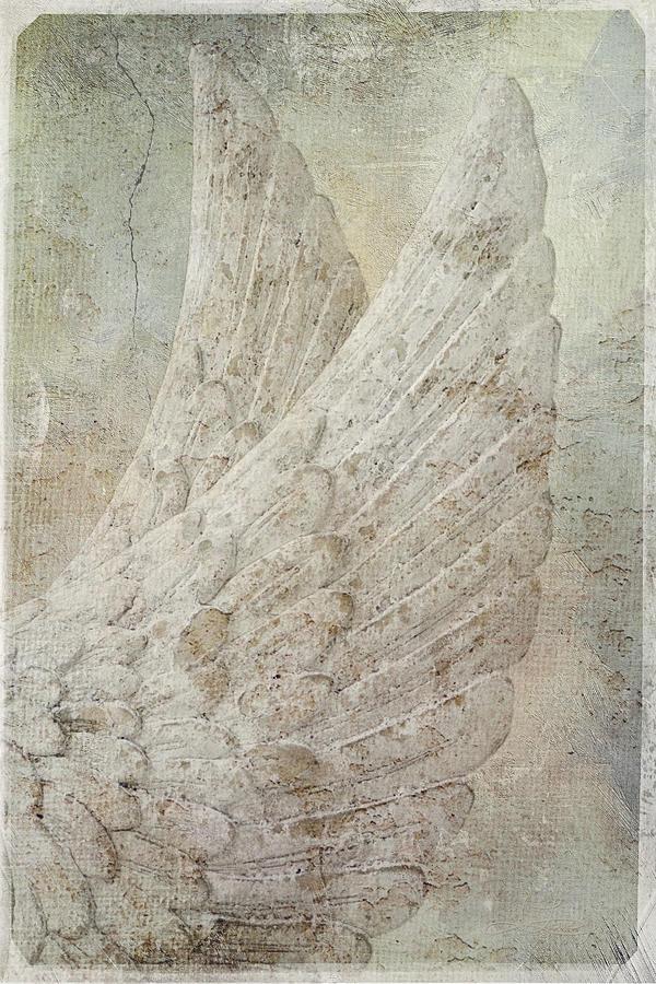 On Angels Wings by Jill Love Photo Art
