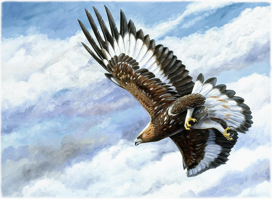 Eagle Painting - On Attack by Dag Peterson