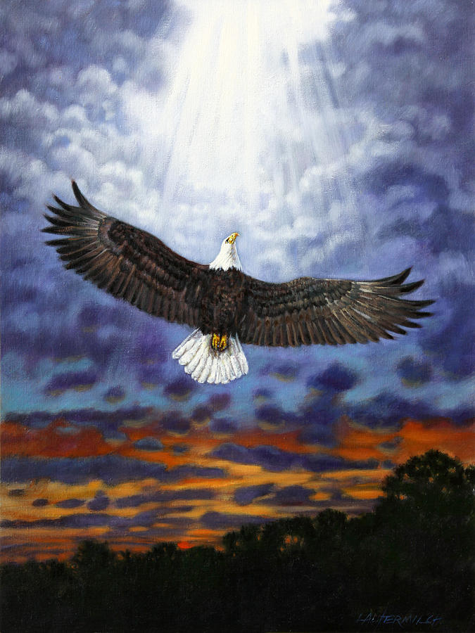 Eagle In Flight Painting - On Eagles Wings by John Lautermilch