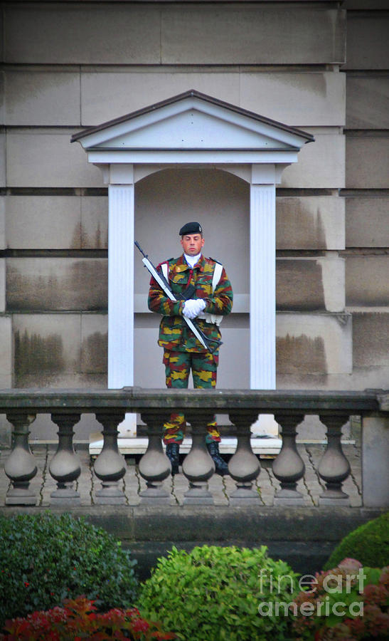 Royal Photograph - On Guard by Jost Houk