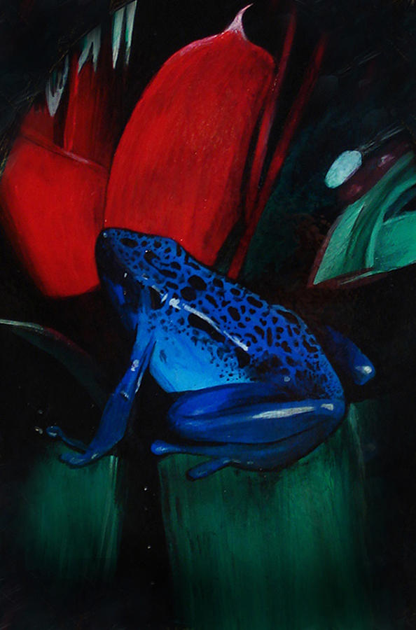 Poison Dart Frog Painting - On Safari - Poison Dart Frog by Carrie Jackson
