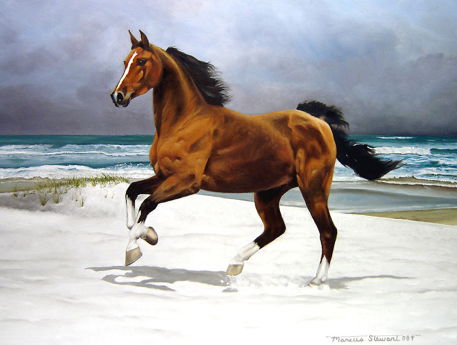 Horse Painting - On The Beach by Marc Stewart