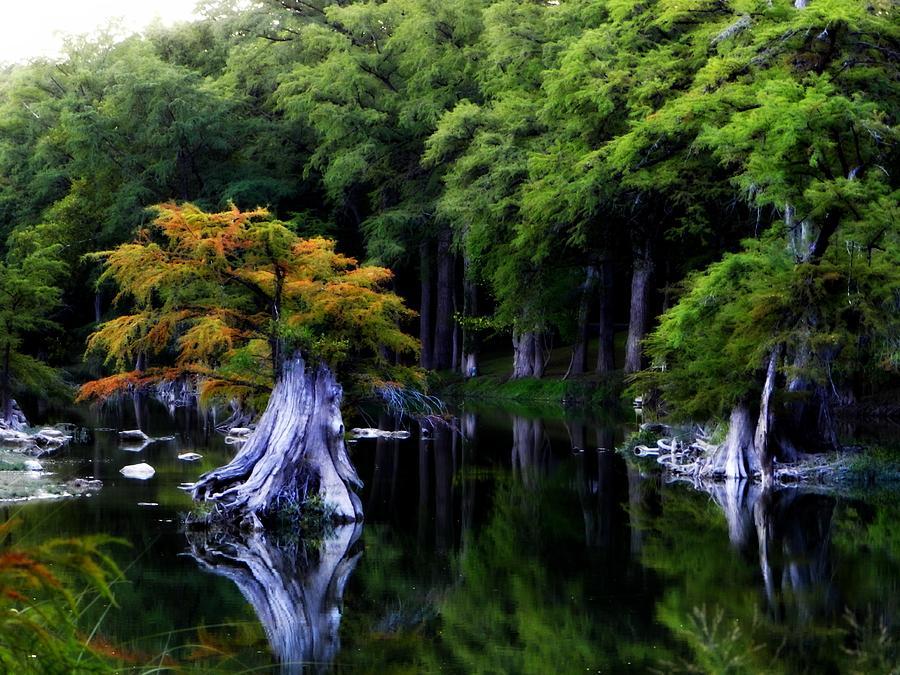Landscape Photograph - On The Blanco River by Alicia R Paparo