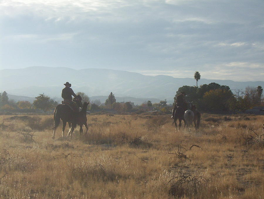 Western Photograph - On The Range by Janey Loree