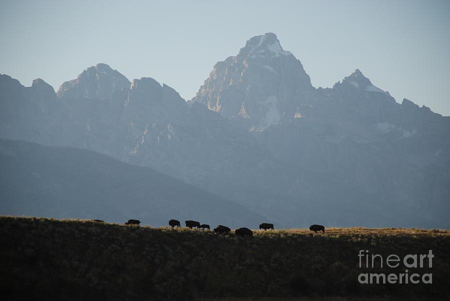 On the Ridge by Jim Goodman