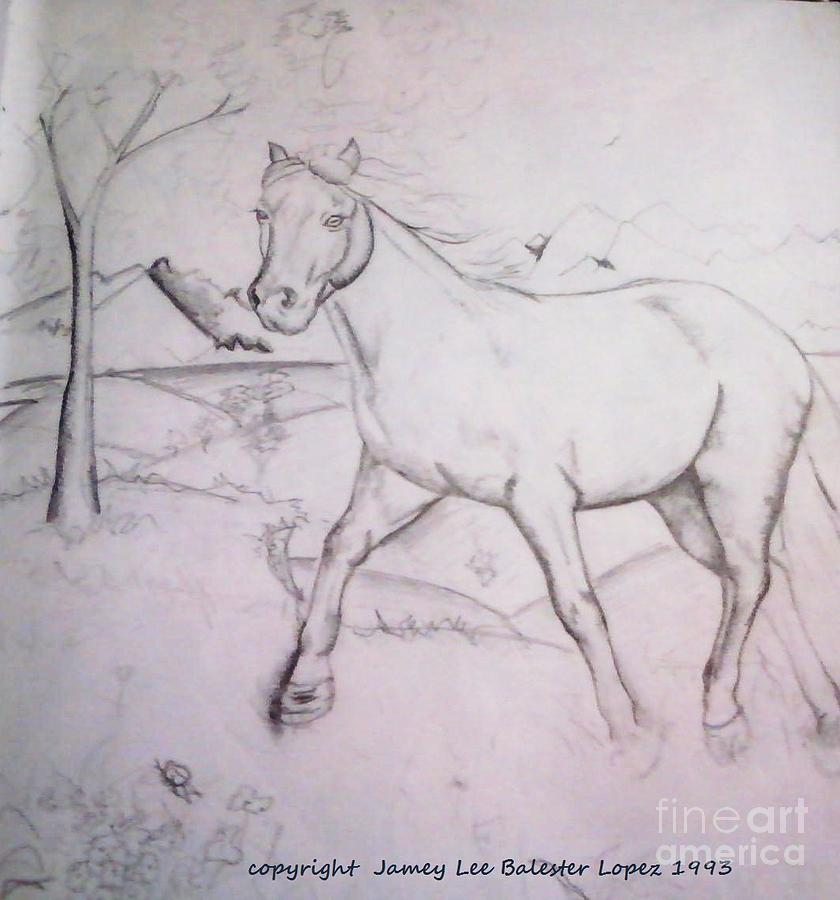 Horse Drawing Drawing - On The Ridge Sketch by Jamey Balester