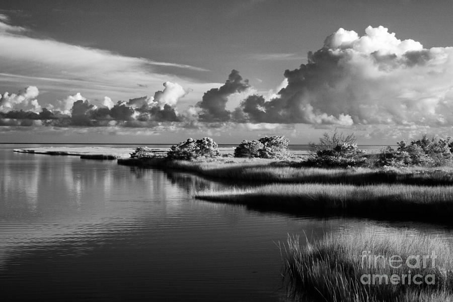 North Carolina Photograph - On The Sound Side by Dan Carmichael