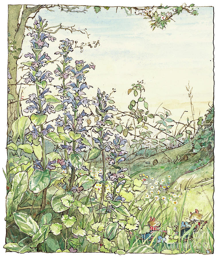 Brambly Hedge Drawing - On The Way To The Store Stump by Brambly Hedge