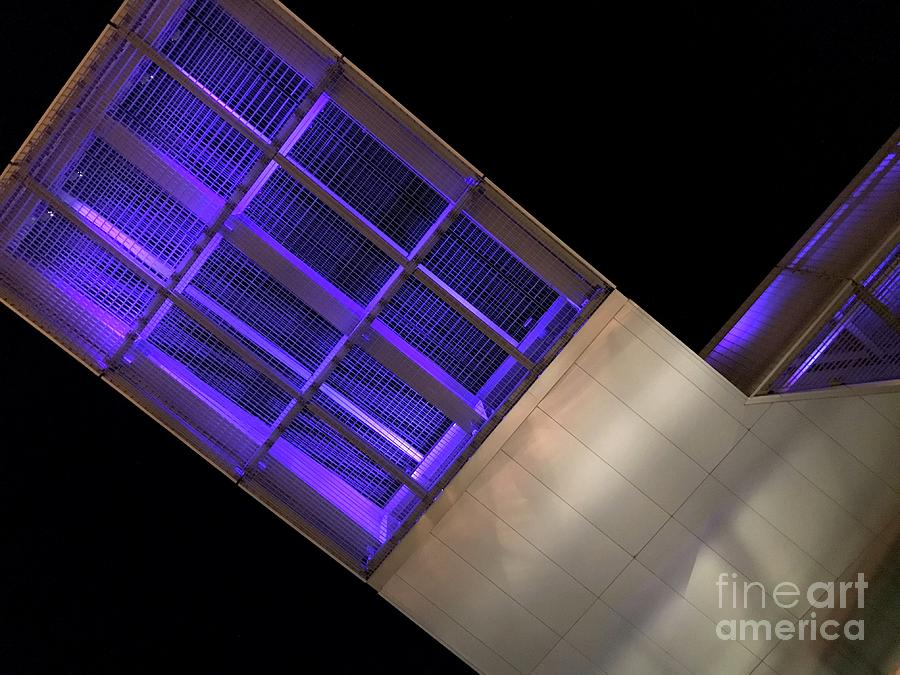 Indigo Photograph - On The Wings Of The Night by Trish Hale