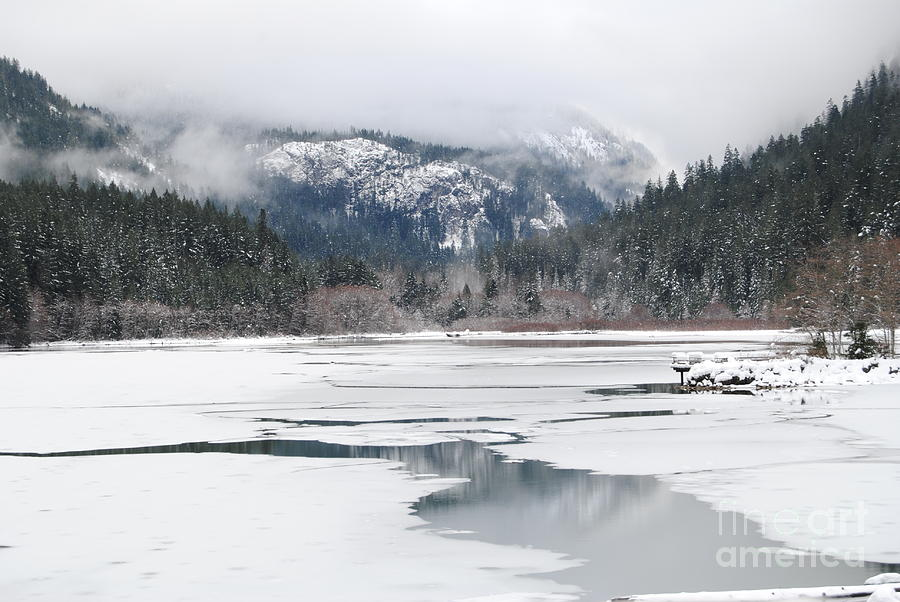 Frozen Photograph - On Thin Ice by Beth Erickson