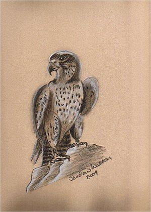 On Watch Drawing by ShadowWalker RavenEyes Dibler