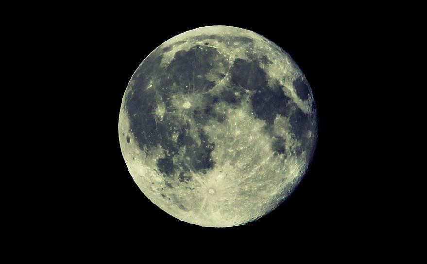Blue Moon Photograph - Once in a Blue Moon by Candice Trimble