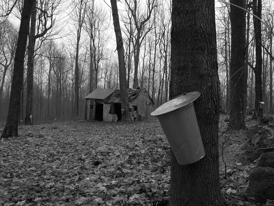 B&w Photograph - Once Upon A Time At The Sugar Shack by Dominic Labbe
