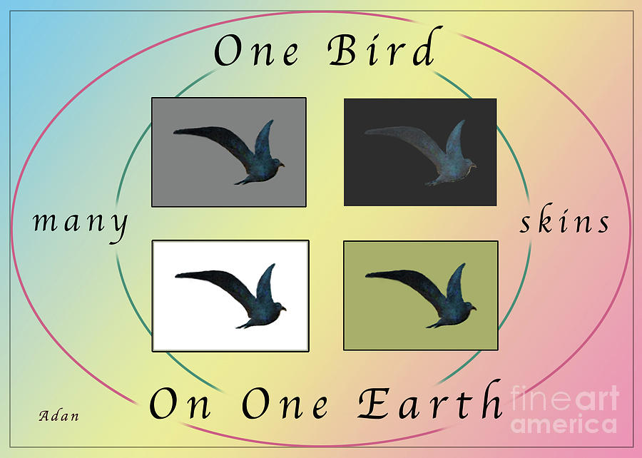Bird Photograph - One Bird Poster and Greeting Card v1 by Felipe Adan Lerma