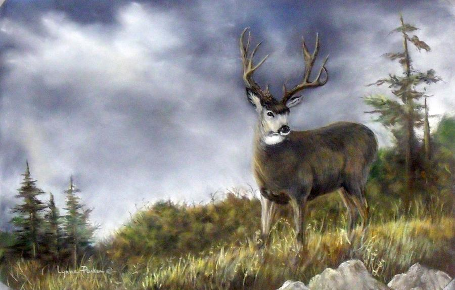 One Lonely Mule Deer Painting By Lynne Parker